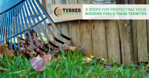 8 Steps for Protecting Your Wooden Fence From Termites